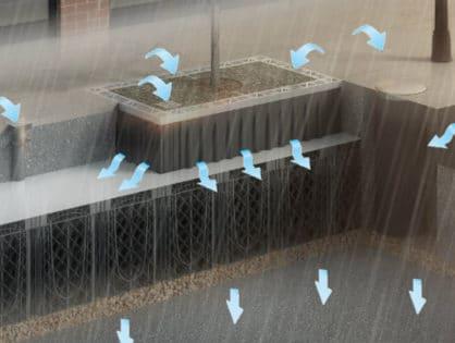Regenwassermanagement mit Bäumen bei Starkregen und Sturzfluten