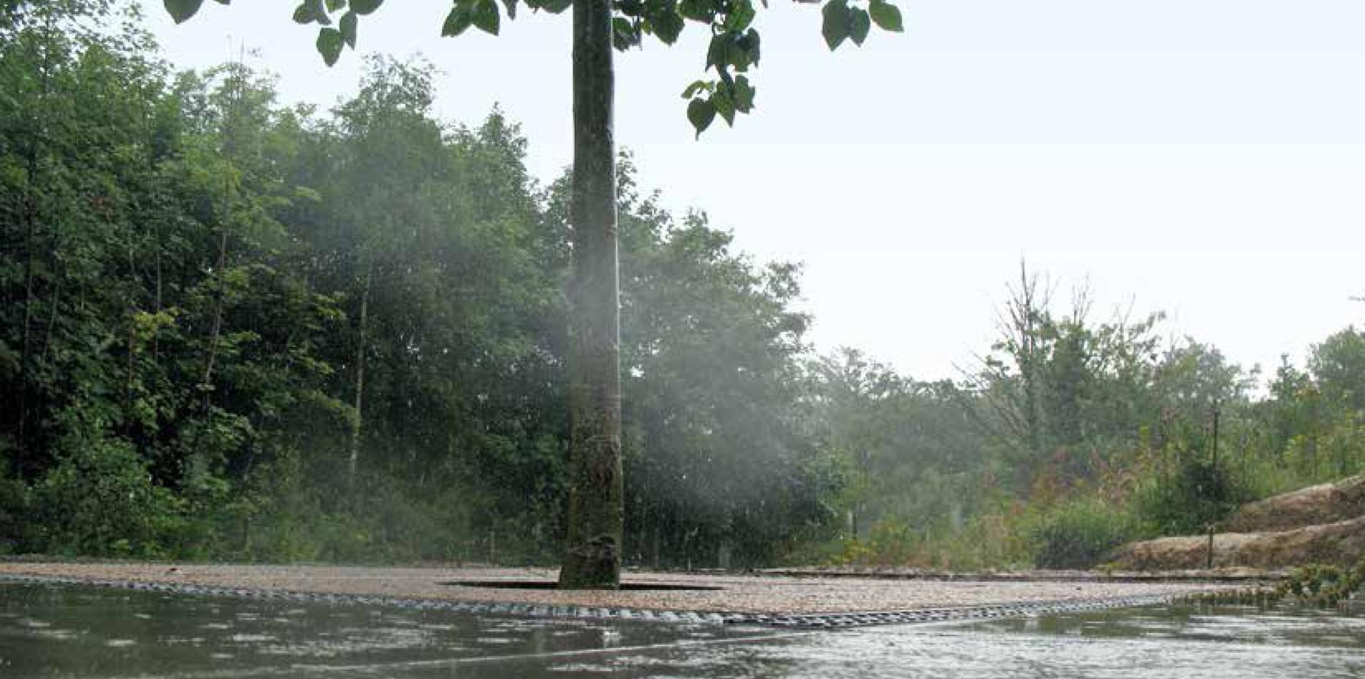Durch die Aufnahme von großen Mengen Oberflächenwasser findet mit dem ArborFlow Baumstandort ein effektives Regenwassermanagement statt.
