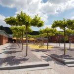 RootSpace Baumstandorte an der Bushaltestelle am Platz am Gemeindehaus in Biebergemünd
