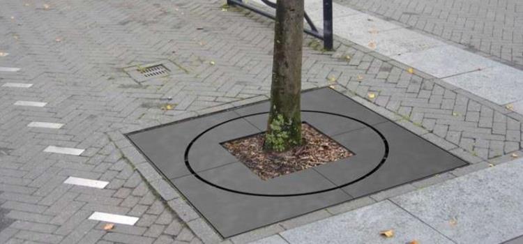 Die Baumscheibe Bloc in Bildern