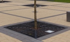 Dill Baumscheibenabdeckung
