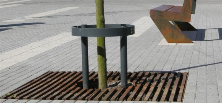 Die Baumscheibe Rofan in Bildern