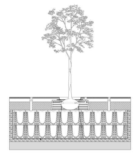 Schnittzeichnung Wurzelkammersystem RootSpace