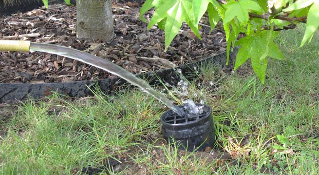 RootRain Bewässerung