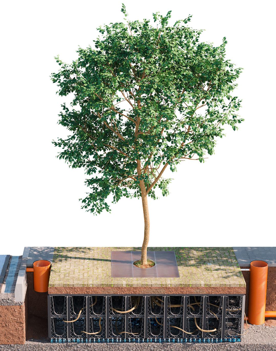 ArborSystem, ArborFlow